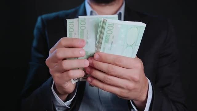 Man Counting Euros: Stock Video