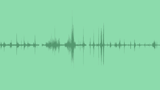 Lake Bank Nature Ambience: Sound Effects