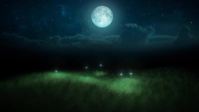 Fireflies On Moonlit Meadow Loop: Stock Motion Graphics