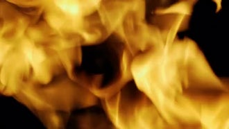 Fire Burns Closeup: Stock Video