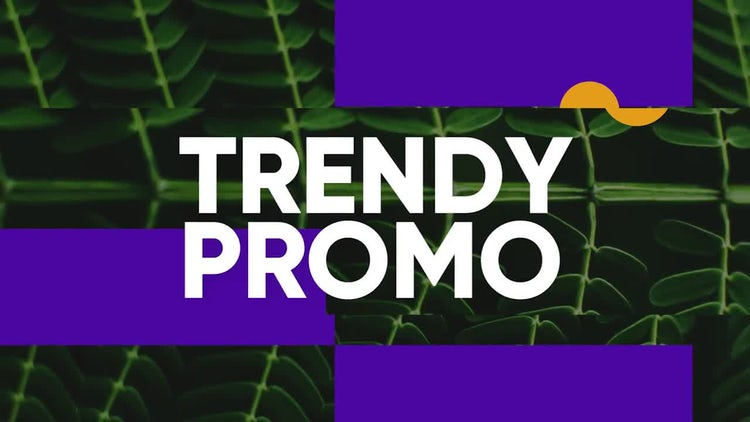 Elegant Clean Promo : Premiere Pro Templates