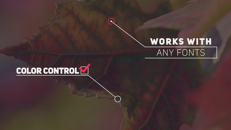 20 Callout Pack: After Effects Templates