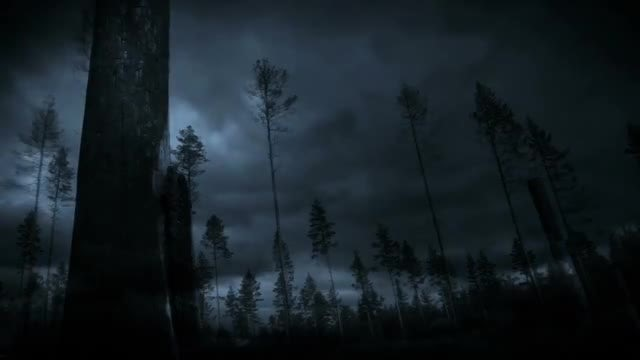 Lightning Storm: Stock Motion Graphics
