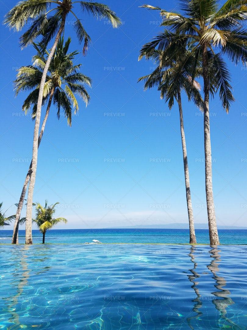 The Pool In Bali: Stock Photos