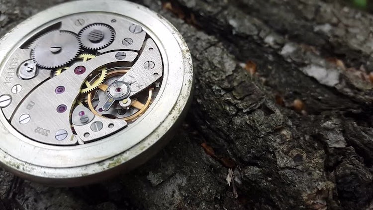 Stop Watch On Wood: Stock Video