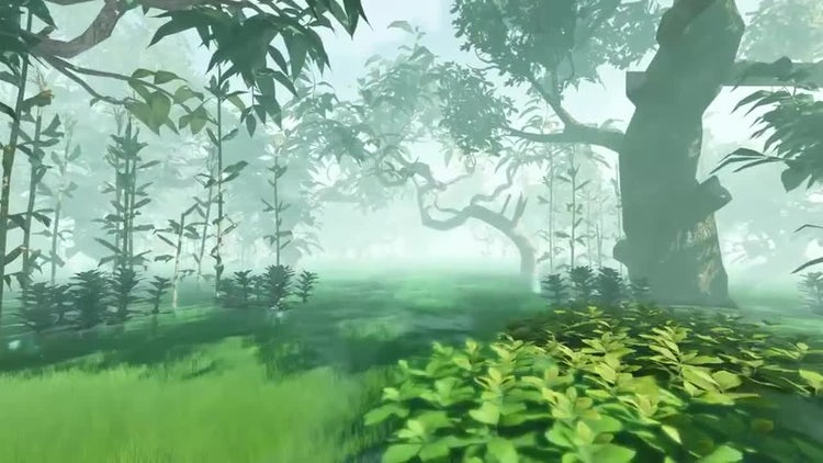 Movement On A Flooded Forest : Motion Graphics