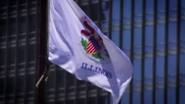 Illinois Flag: Stock Video