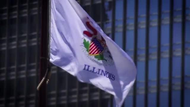 Illinois Flag: Stock Video