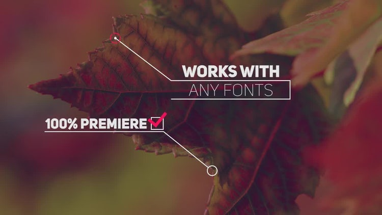 20 Callout Pack: Premiere Pro Templates