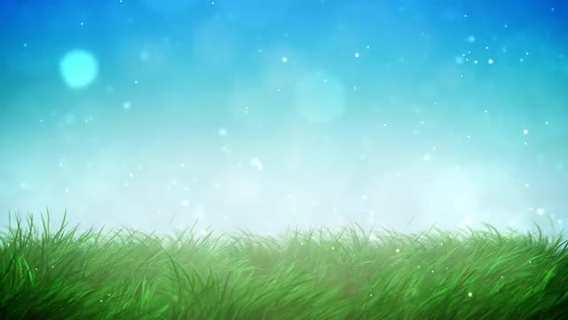 Sunny Grass Loop: Stock Motion Graphics