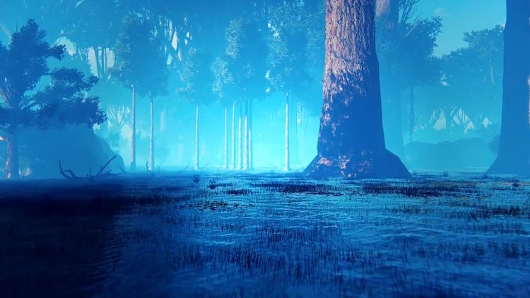 Magic Forest: Stock Motion Graphics