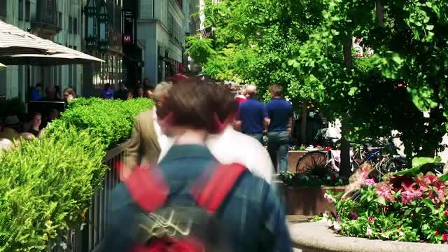 Daytime Crowd In Chicago: Stock Video