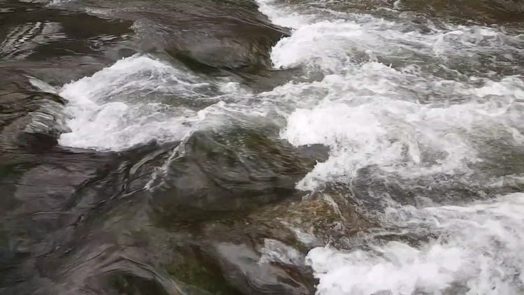 Clean River At Spring: Stock Video