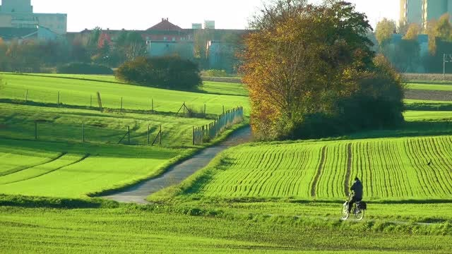 Bike Through Green Fields: Stock Video