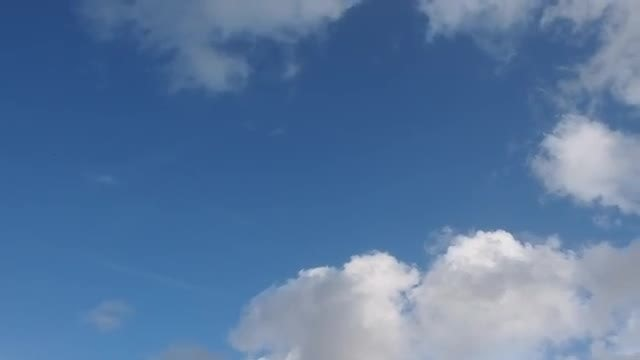 Looking Up At The Sky: Stock Video