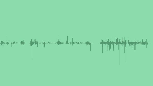 Crunching Twigs: Sound Effects
