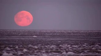 Red Moon Setting Into Sea: Stock Video