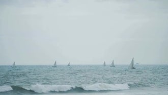 Sail Boats On Windy Day: Stock Video