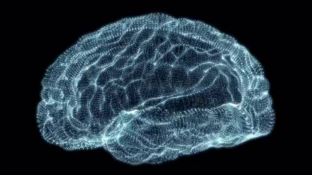 Holographic Particle Brain: Stock Motion Graphics