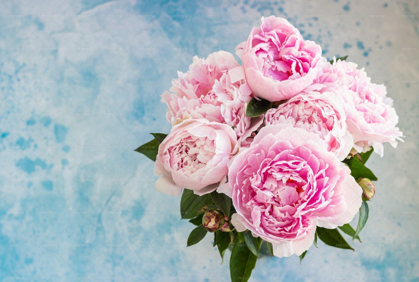 Bouquet Of Beautiful Pink Peonies: Stock Photos