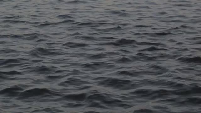 Calm Water Surface: Stock Video