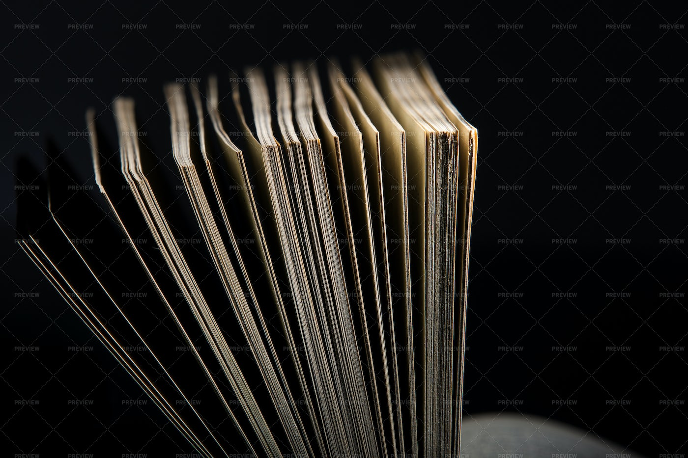 Pages Of An Open Book: Stock Photos
