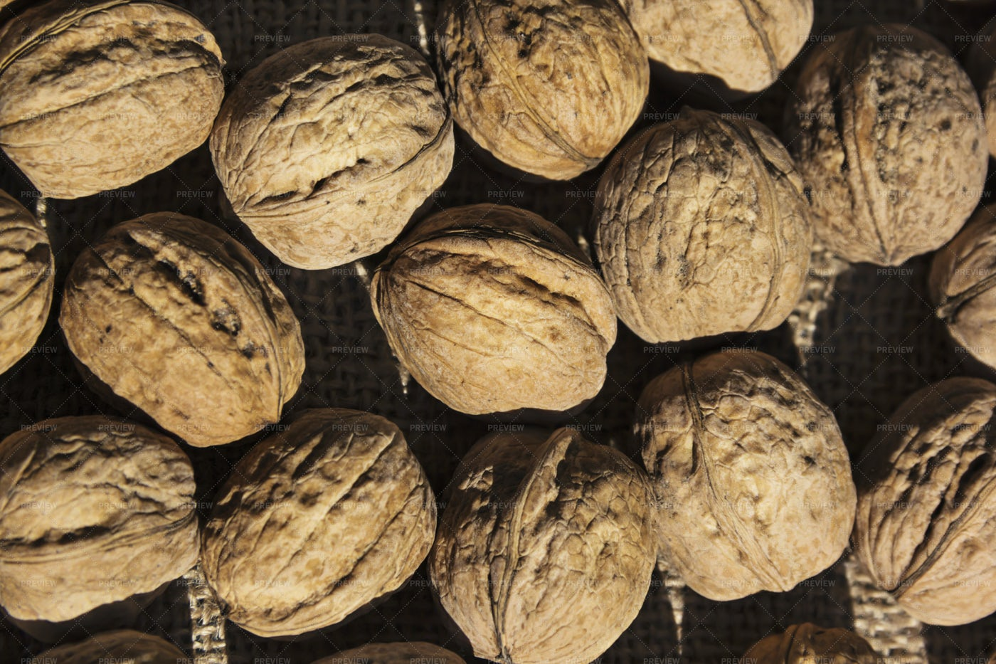 Group Of Walnuts: Stock Photos