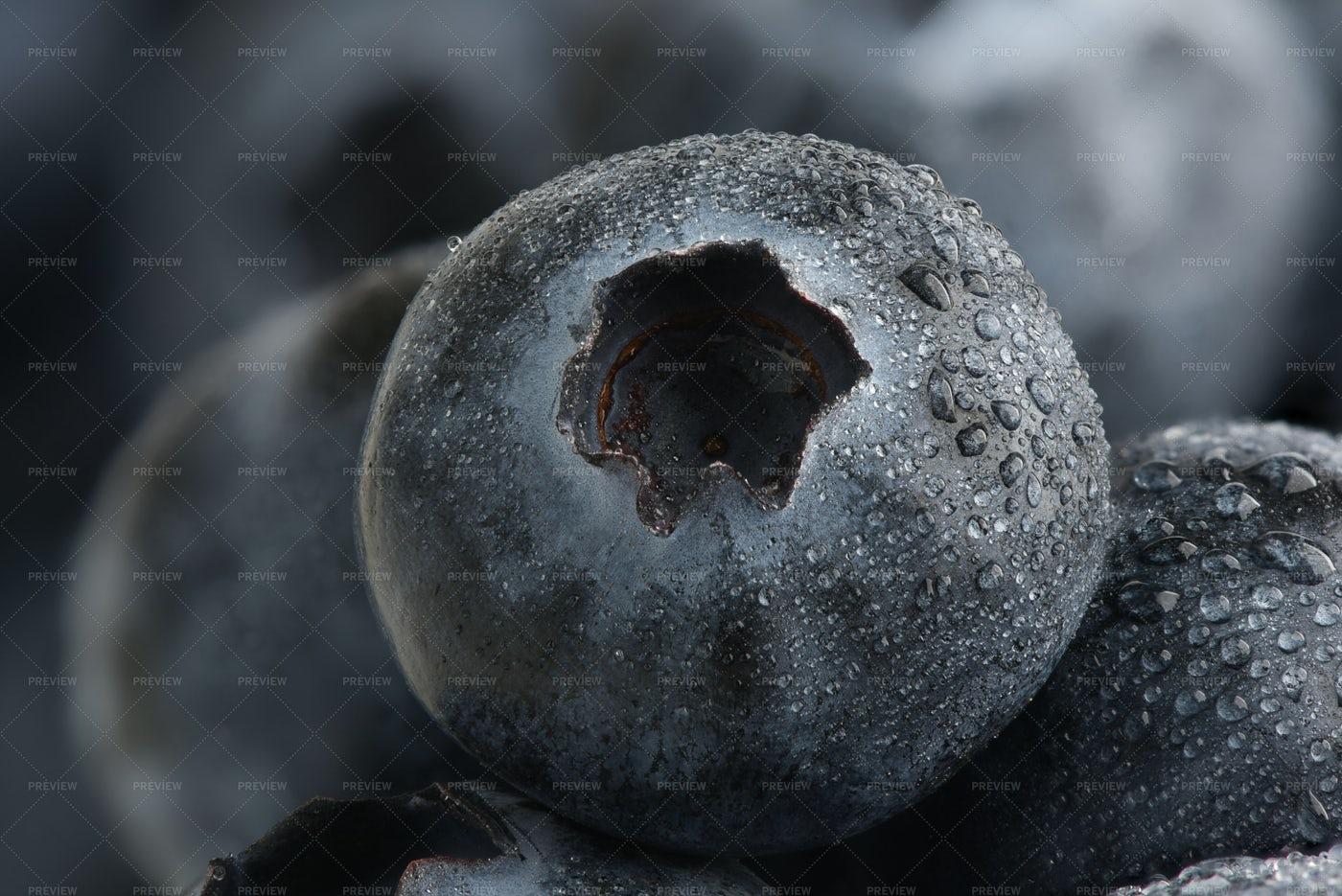 Washed Blueberry Close-Up: Stock Photos