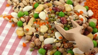 Mix Of Delicious Legumes: Stock Video