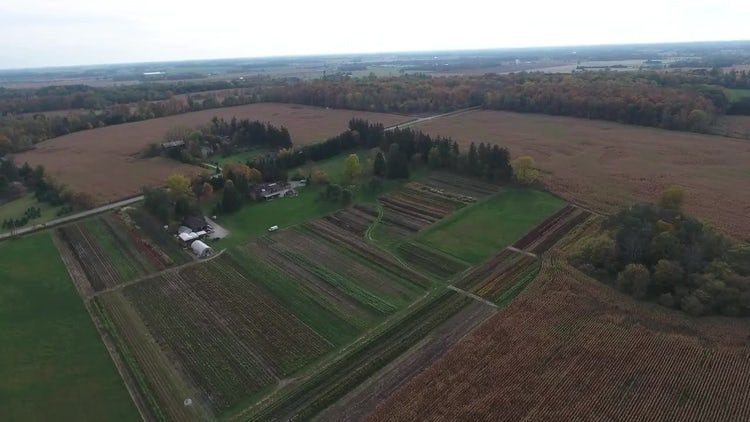Farmhouse With Crops Aerial View: Stock Video
