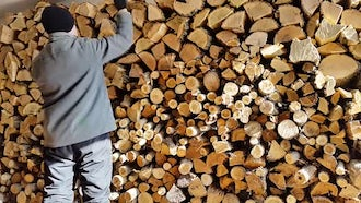 Man Prepares Firewood Stack For Winter: Stock Video