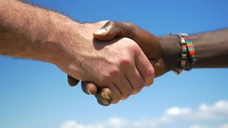 Interracial Handshake: Stock Video