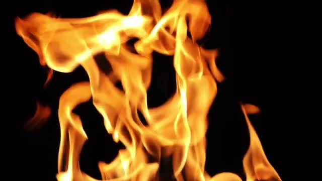 Fire: Stock Video
