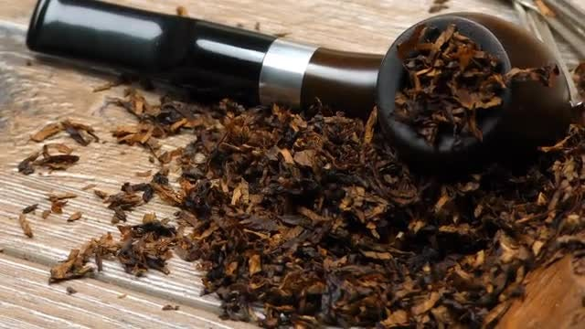 Tobacco Pipe Pack: Stock Video