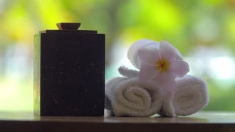 Relaxing Oriental Spa : Stock Video
