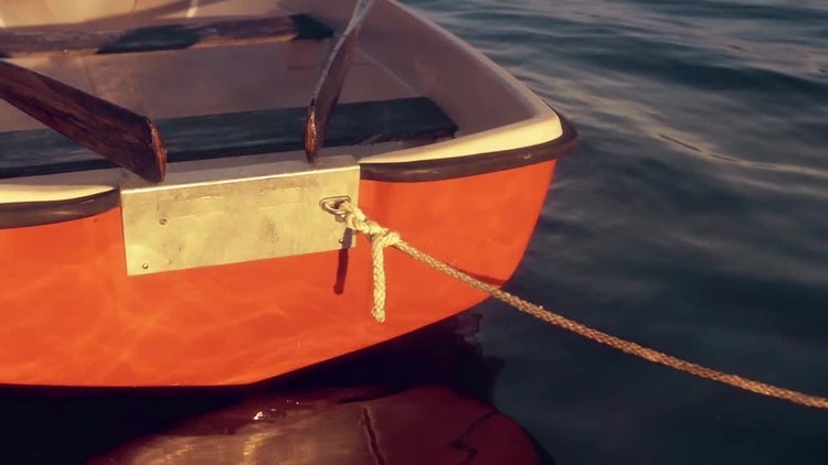Rowing Boat in Summer Lake: Stock Video