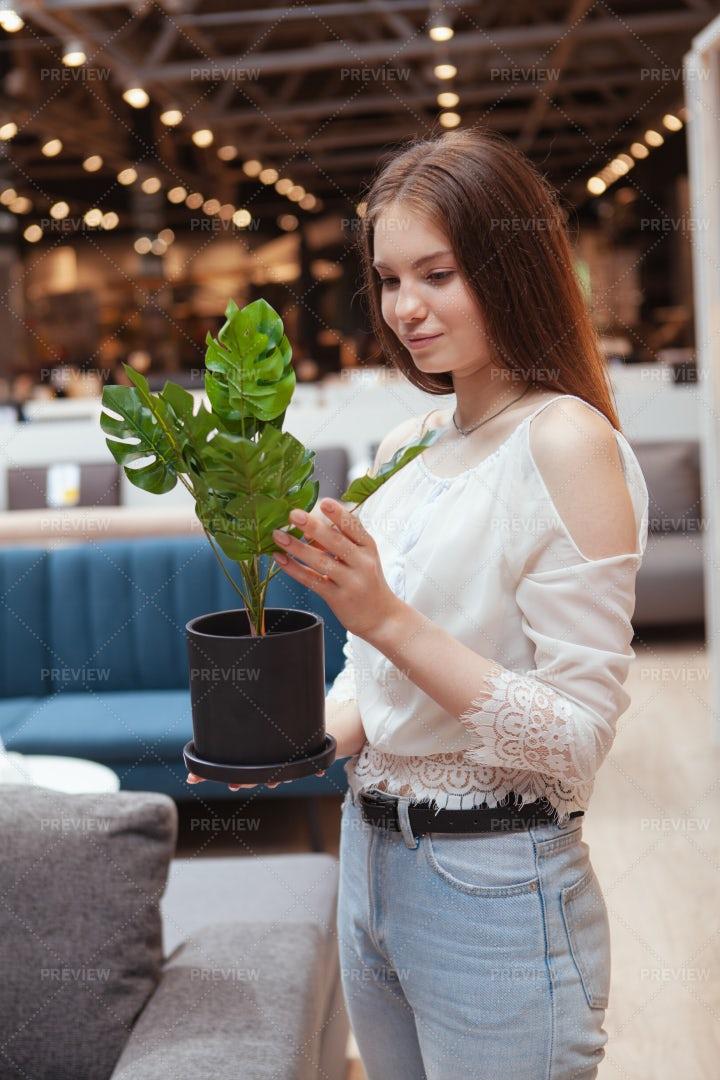 Choosing A New Plant: Stock Photos