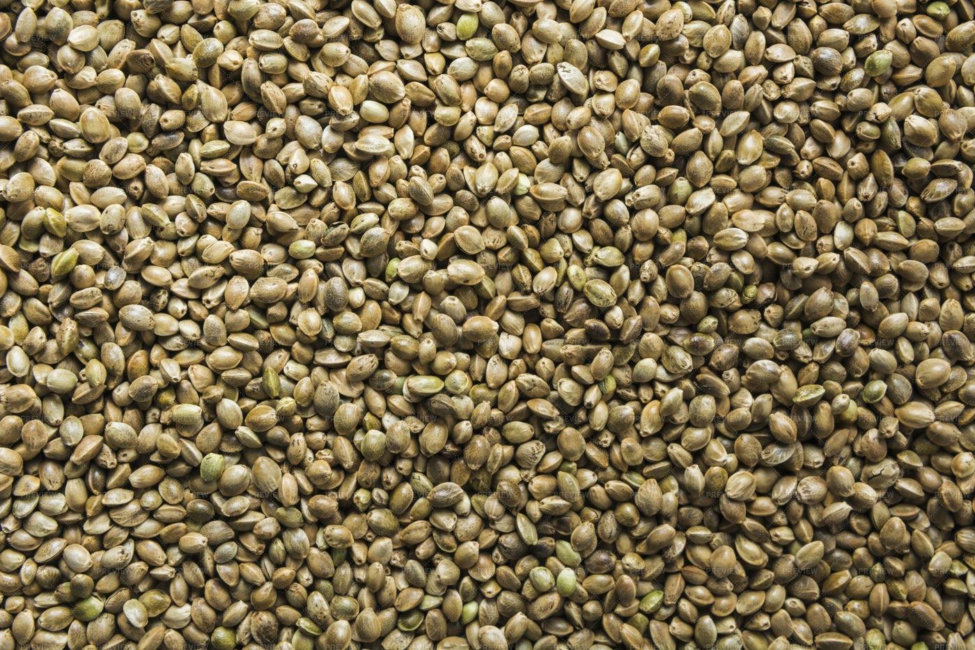 Organic Hemp Seeds: Stock Photos