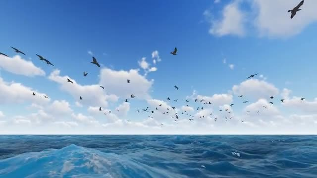 Bird Fly Over The Sea: Stock Motion Graphics