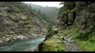 Rogue River Oregon Background: Stock Video