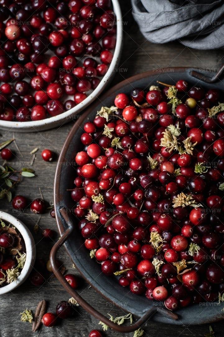 Cranberry: Stock Photos
