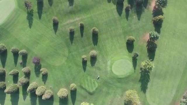 Playing Golf On The Greens: Stock Video