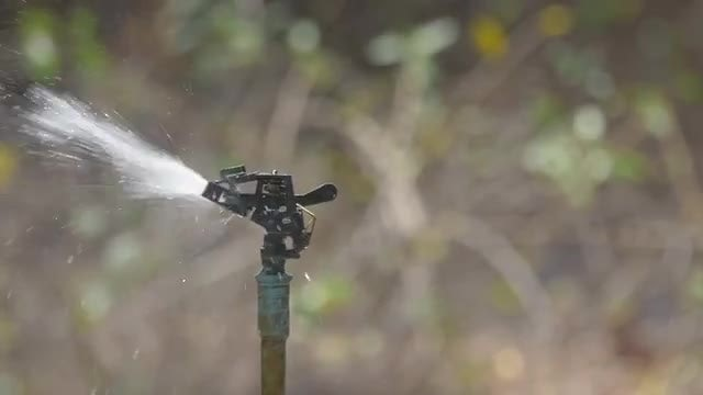 Water Sprinkler In Slow Motion: Stock Video