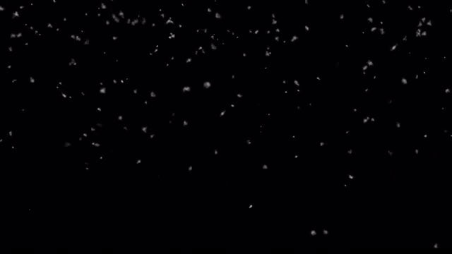Light Snow Snowfall Loop: Stock Motion Graphics