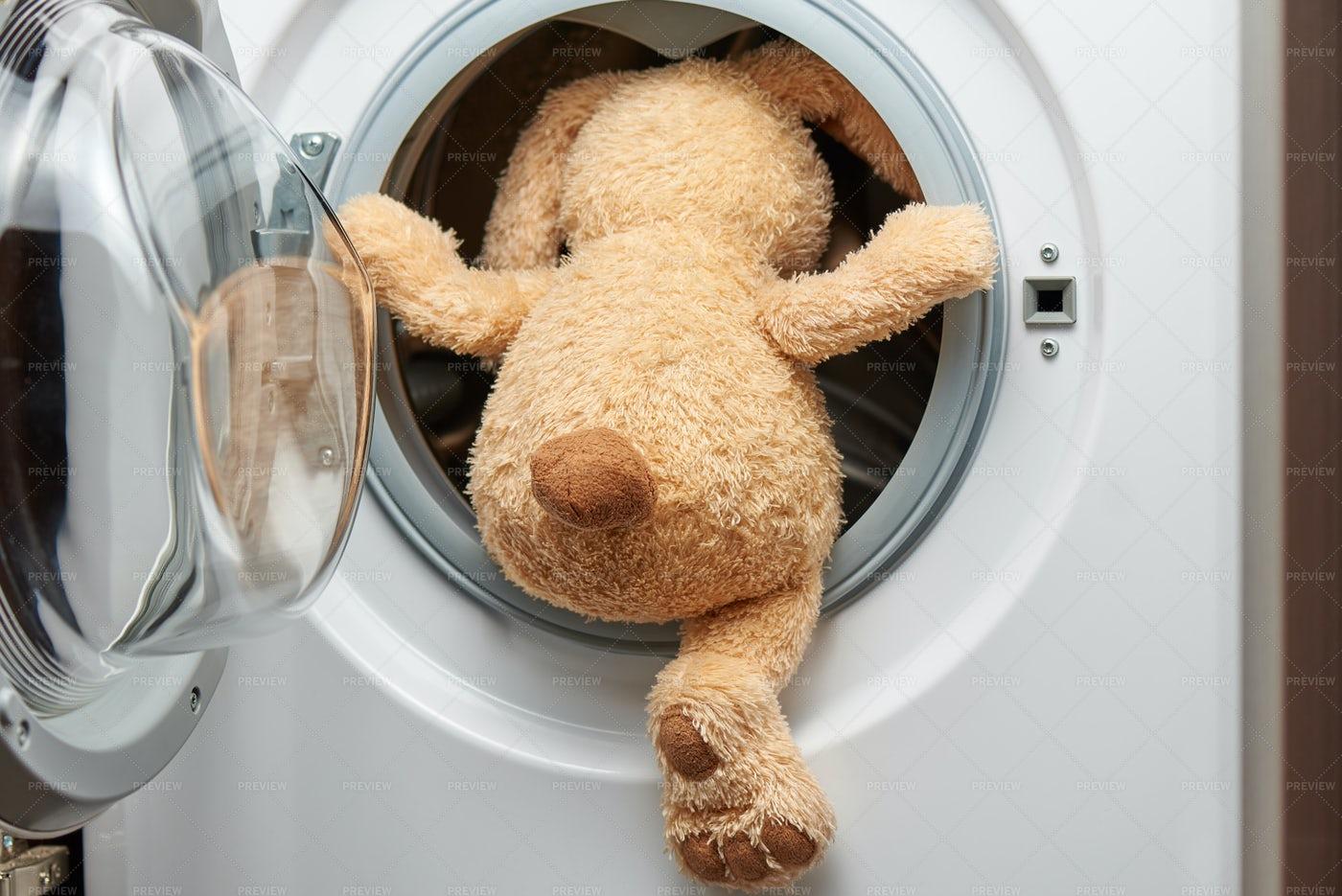 Teddy In Washing Machine.: Stock Photos