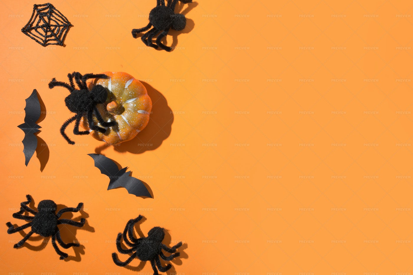 Halloween Spiders: Stock Photos