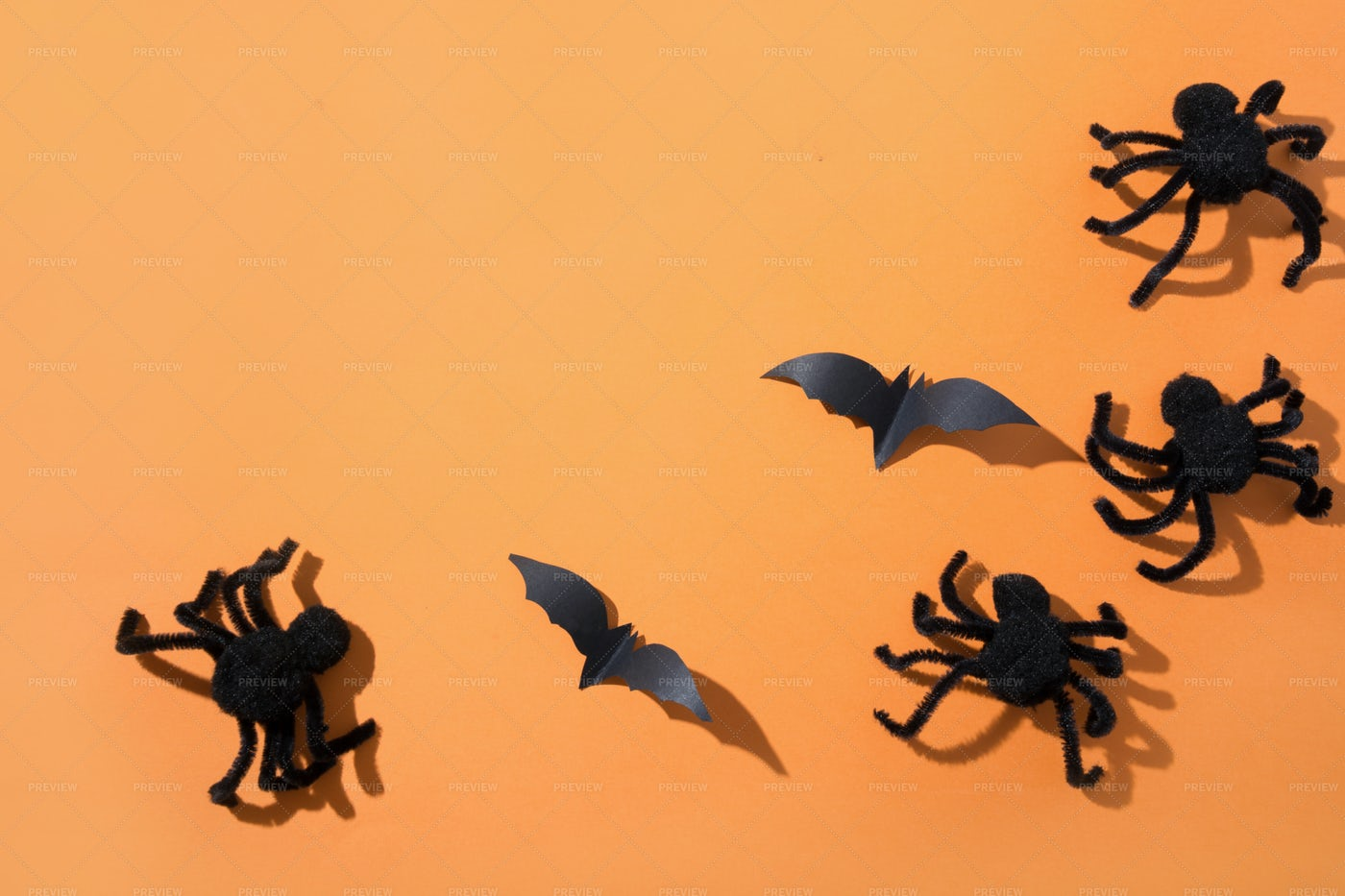 Spiders And Bat: Stock Photos