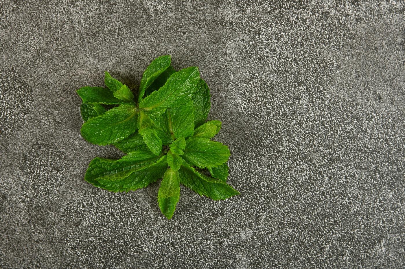 Fresh Green Mint Leaves: Stock Photos