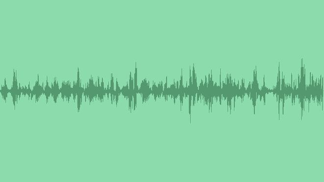 Ravens: Sound Effects