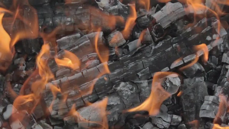 Wood Bonfire With Flames: Stock Video